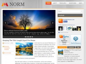 Norm Free Wordpress Theme For Download